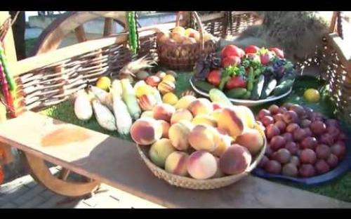 Embedded thumbnail for Видеолик об Абхазии